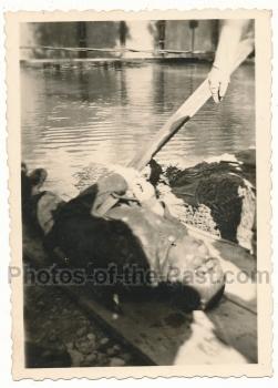 Toter Pioniere Wasserleiche Donau Rumänien