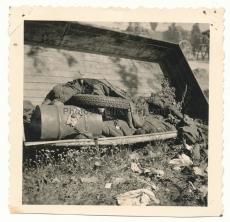 Tote russische Soldaten auf der Ladefläche von einem LKW an der Ostfront