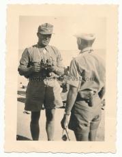 Ritterkreuzträger des Heeres Major Briel in Afrika