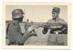 Waffen SS Ausbildung Karabiner Gewehr k98