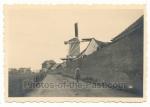 Windmühle bei Bielefeld 1936
