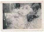 Tote französische Kolonial Soldaten im Straßengraben