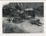 Tote englische Soldaten und Artillerie Schlepper Fahrzeug Wrack an der Dünkirchen Front in Frankreich